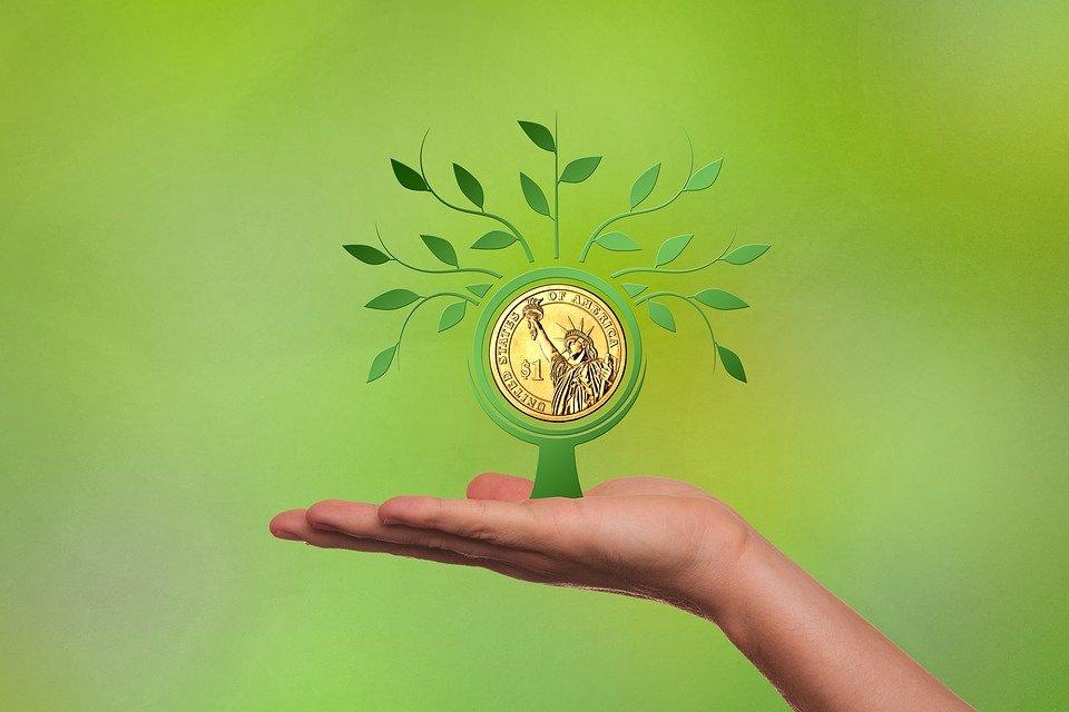 Financing, Business, Dollar, Hand, Present